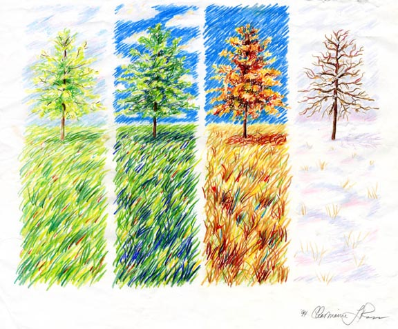 the four seasons of nature life and the automobile salesperson